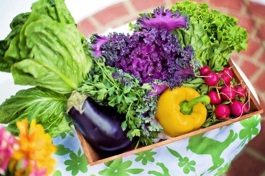 vegetables (1)-min